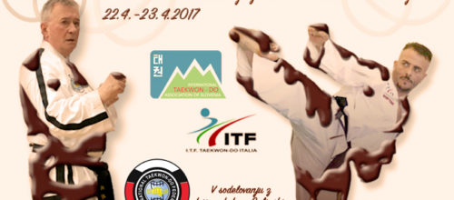 Taekwon-Do Chocolate Weekend 2017 v Radovljici
